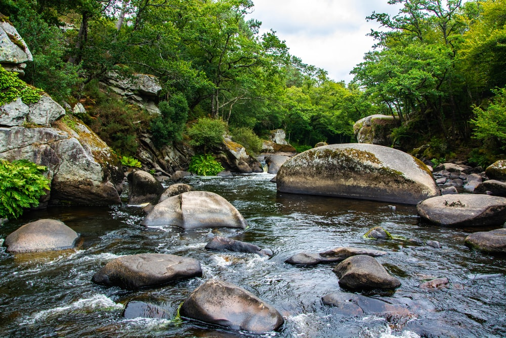 gray stones river