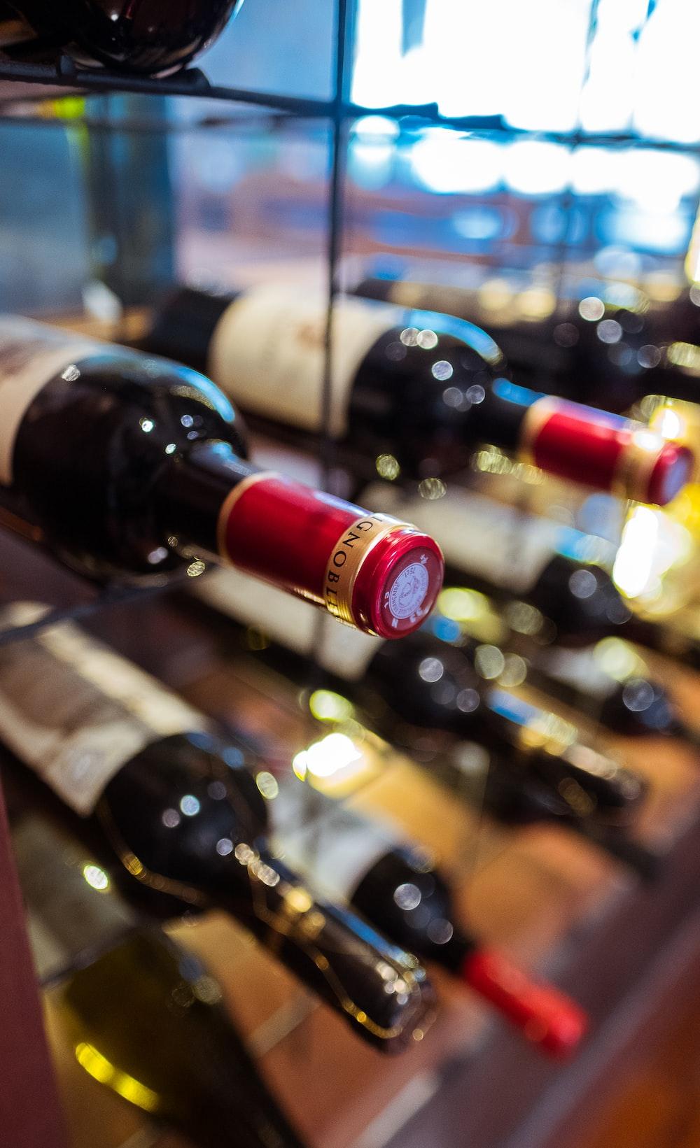 wine bottles on glass wine rack