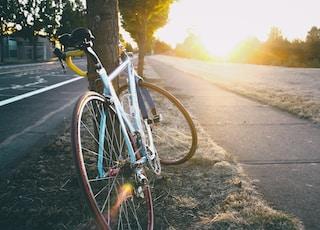 blue road bike parked beside tree
