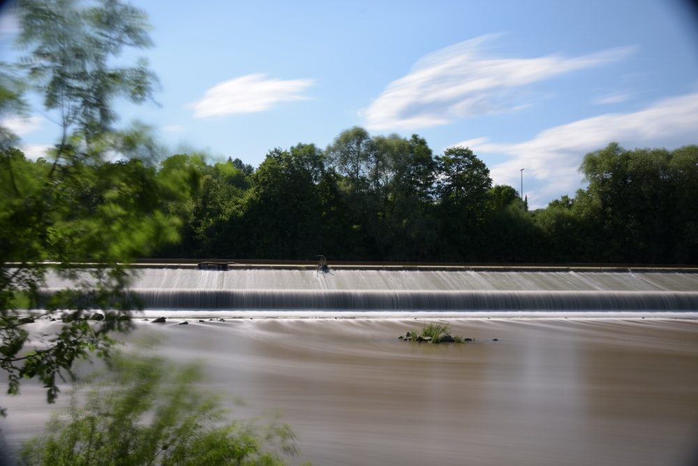 body of water across green trees