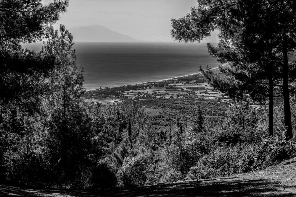 grayscale photography of sea viewing mountain