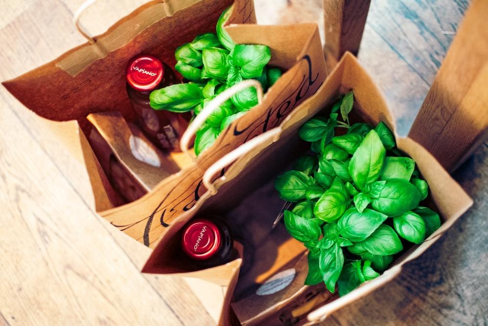 green basil plants in box