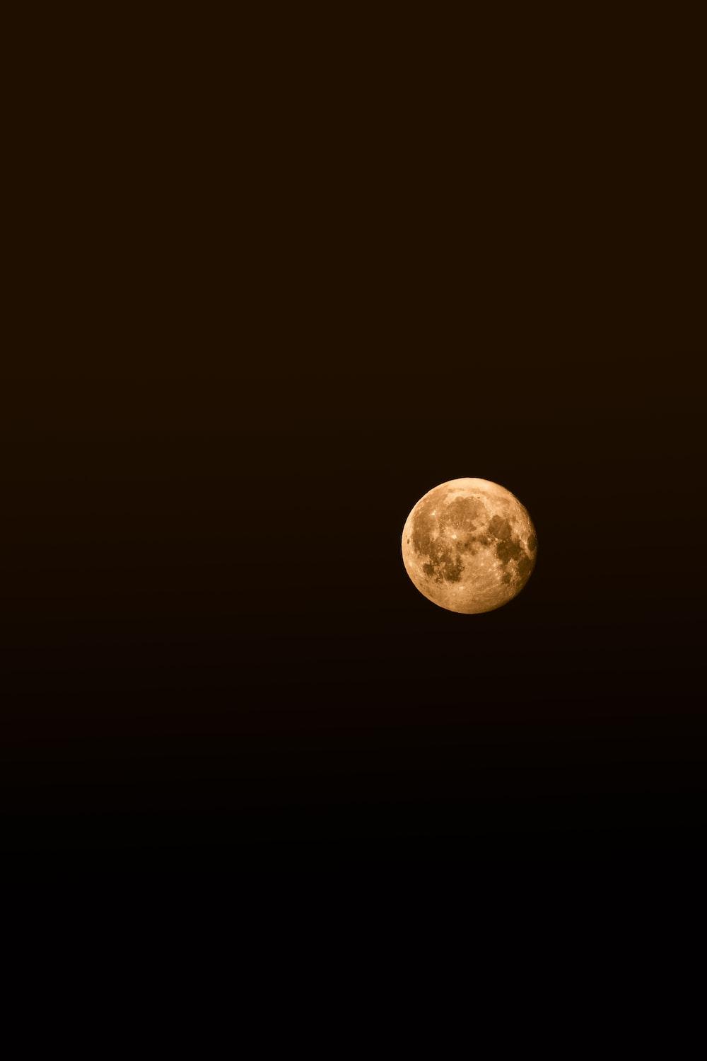 beige moon