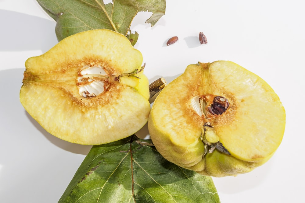 sliced round yellow fruit
