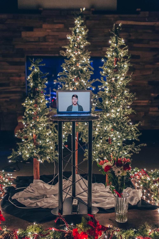 gray monitor turned on near holiday trees