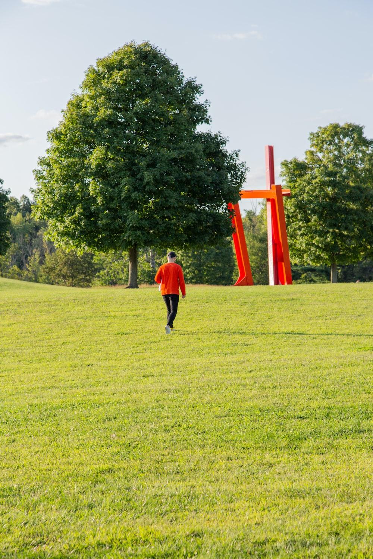 man walking on open field near tree
