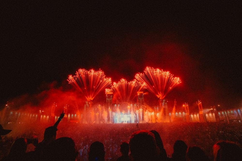 Martin Garrix Pictures | Download Free Images on Unsplash