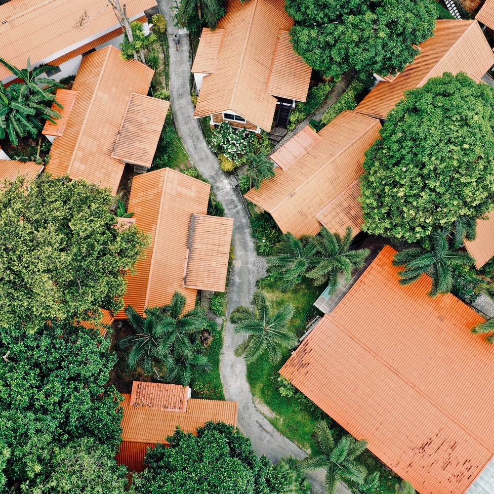aerial photo of houses near green trees during daytime