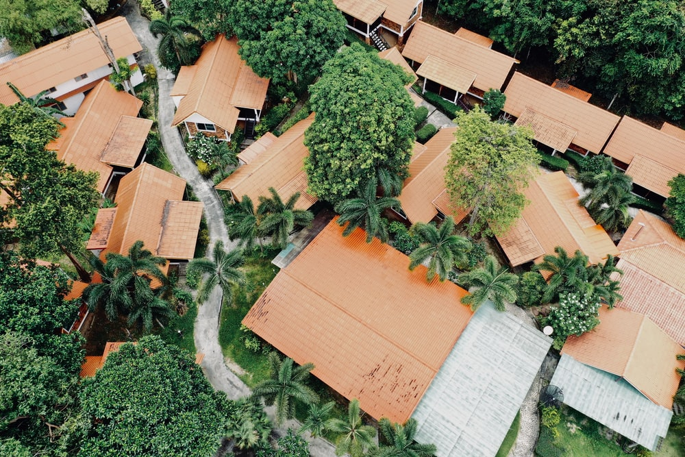 aerial photo of trees near houses during daytime