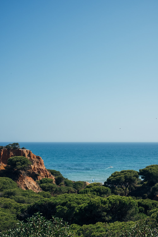 ocean during daytime