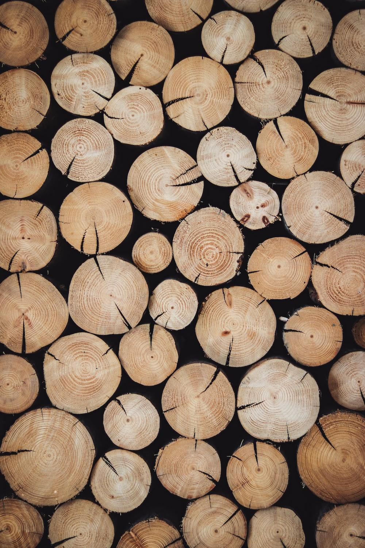 brown wood log lot