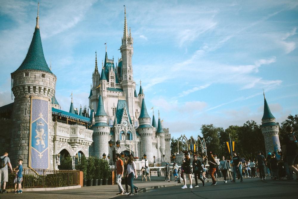 people visiting Disneyland