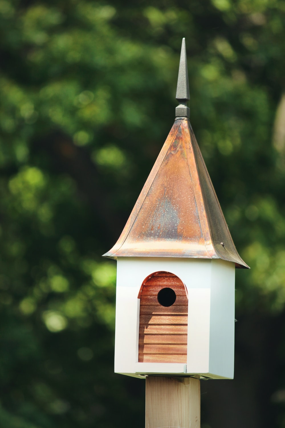 white and brown birdhouse