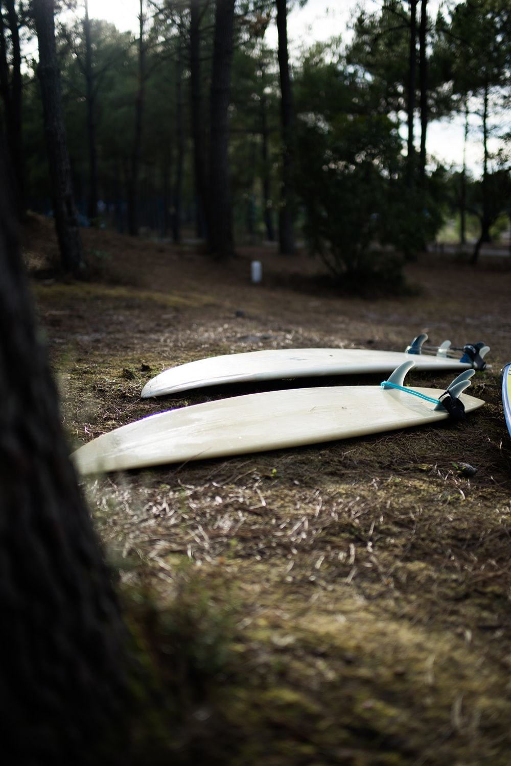 two white surfboards