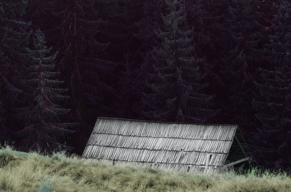 gray nipa house surrounded by trees