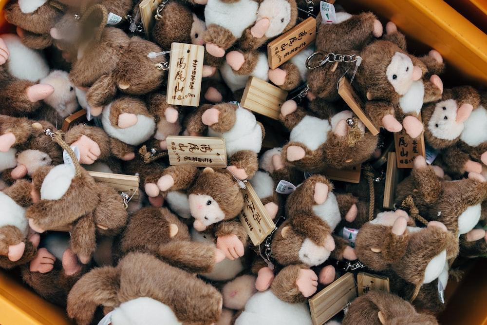 closeup photo of monkey plush toy lot