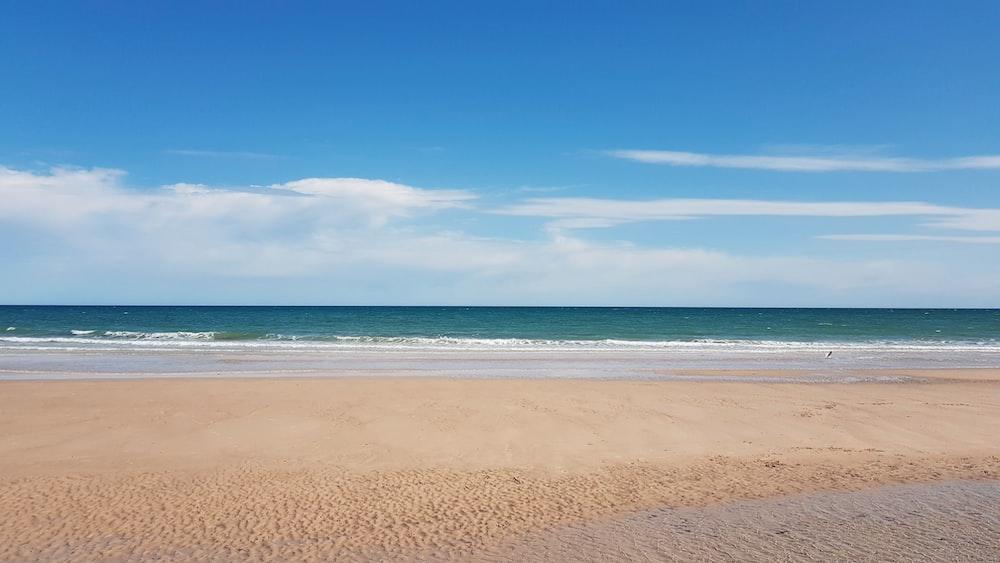 ocean at daytime