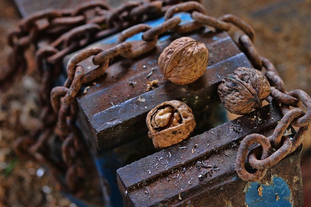 walnuts on brown metal chain