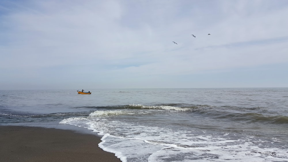 red and black boat on ocean water near shoreline