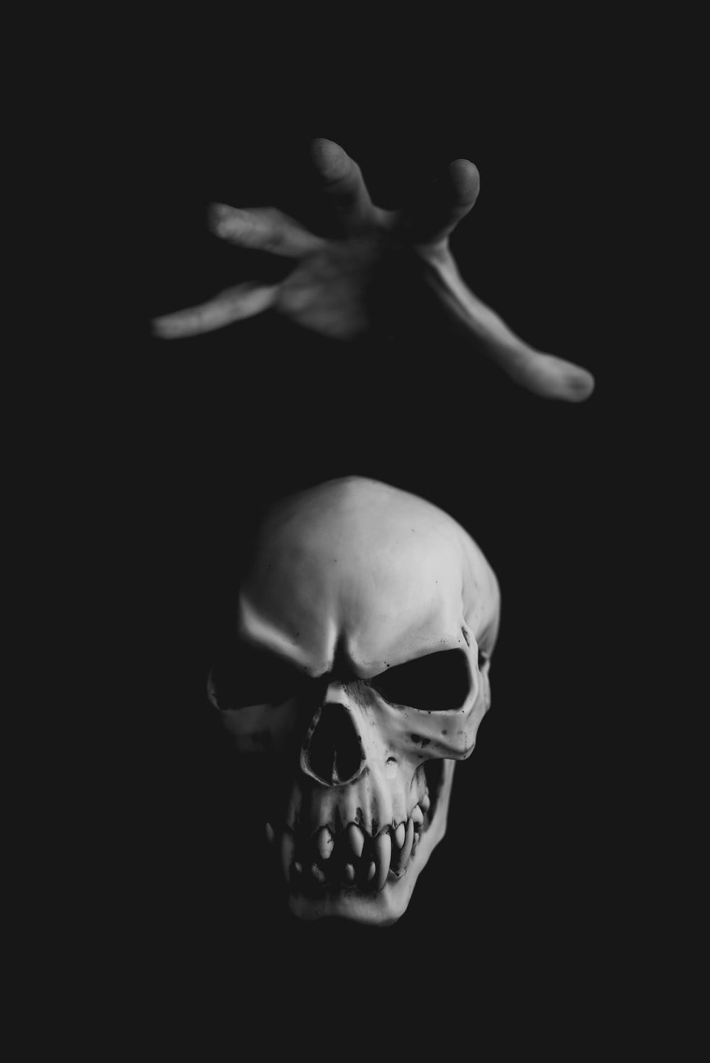 27 Horror Pictures Download Free Images On Unsplash