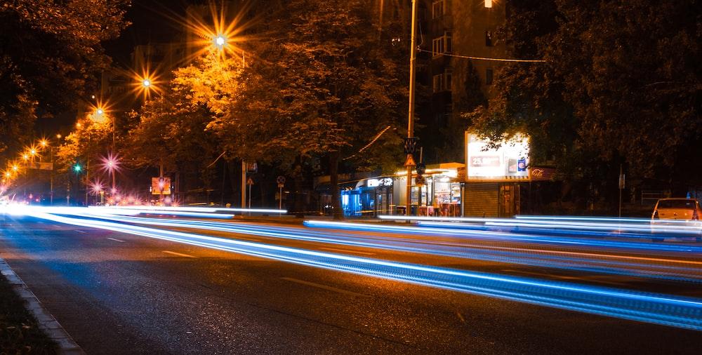 black concrete road near trees at nighttime
