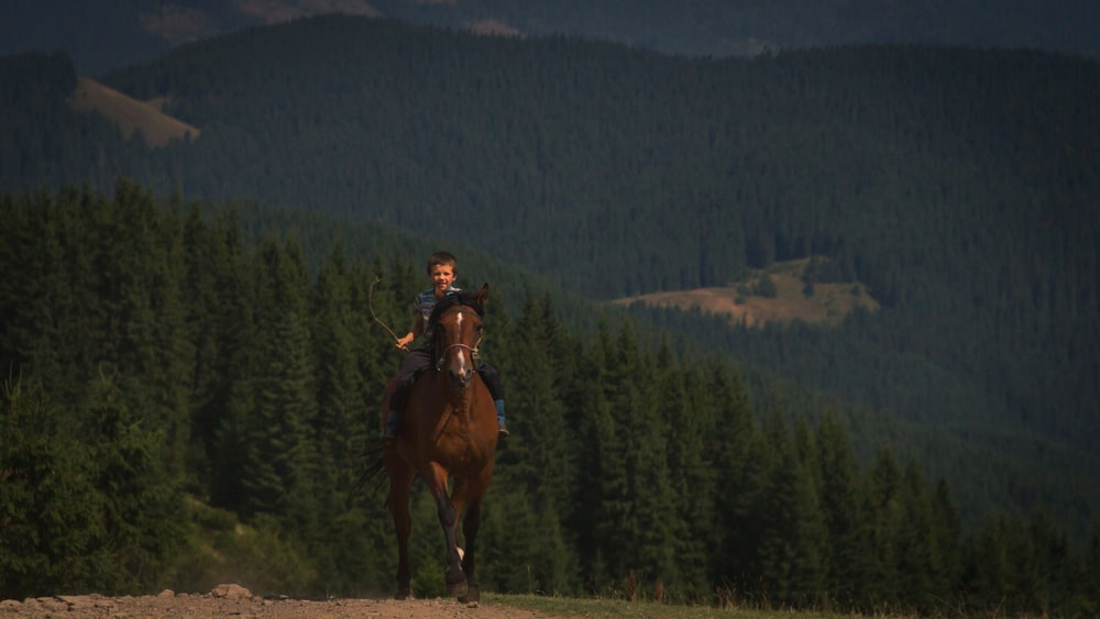 boy riding on horse during daytime
