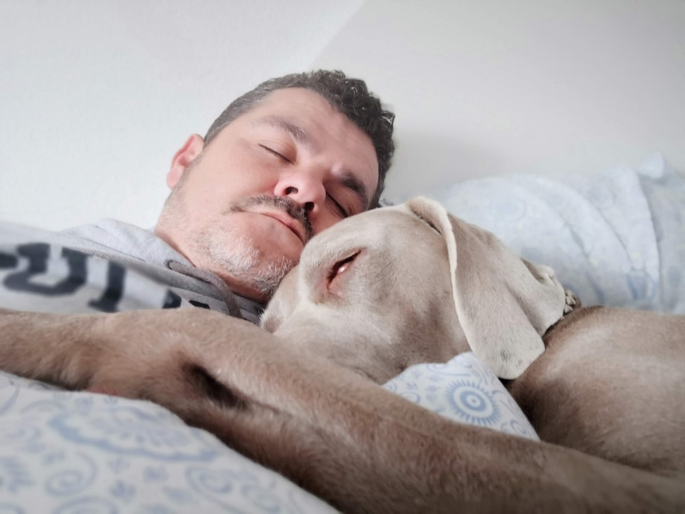 man laying on bed beside dog