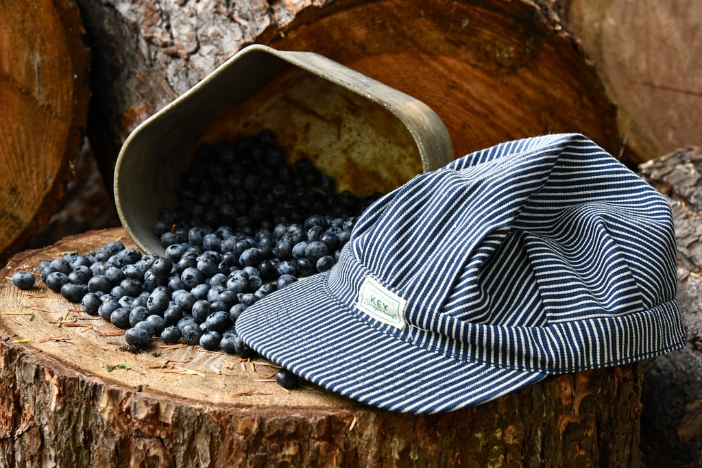 gray cap and blackberries