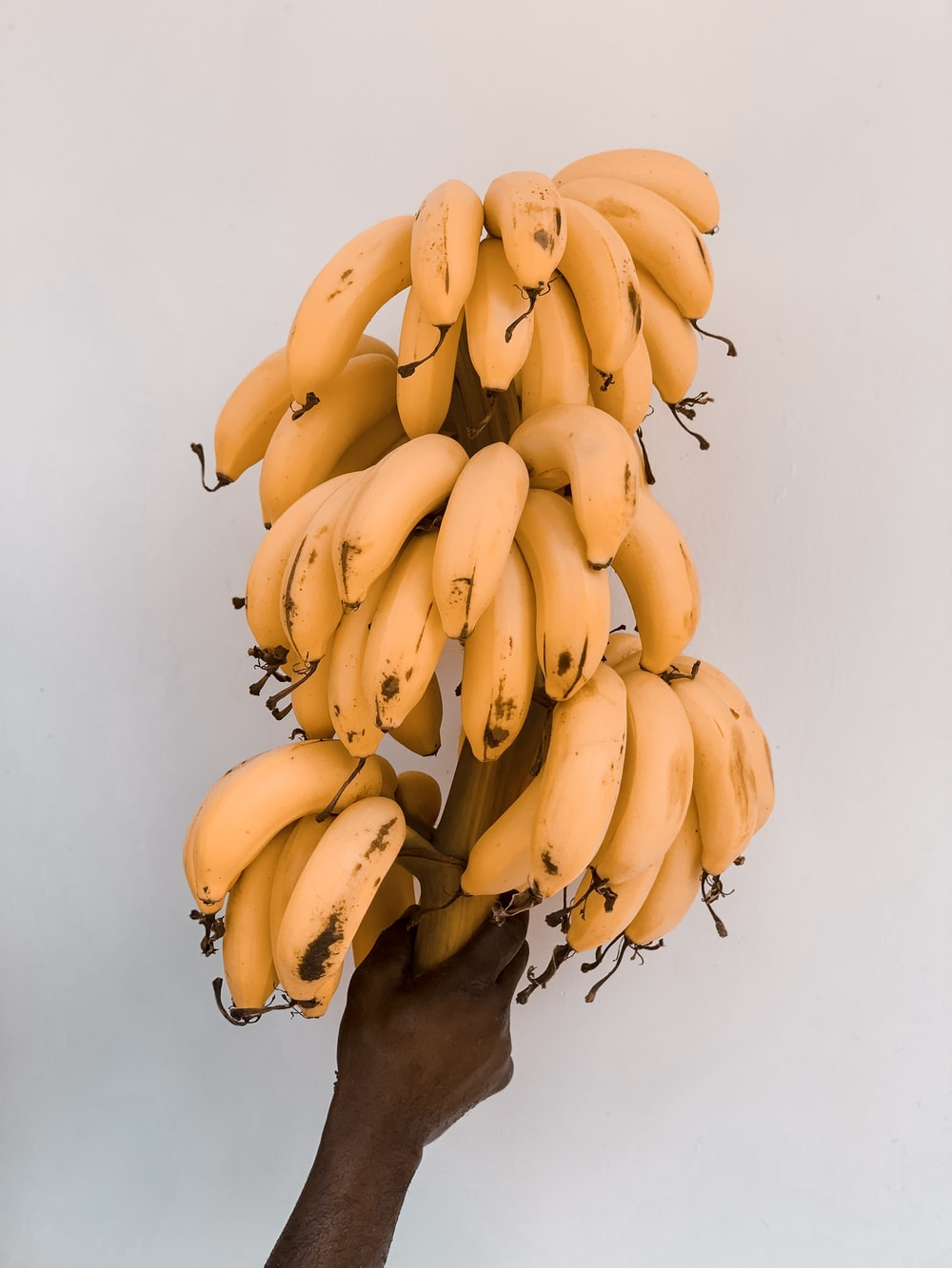 Facts About Carbs In Banana