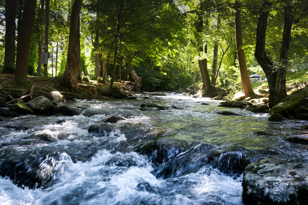 photography of river during daytime