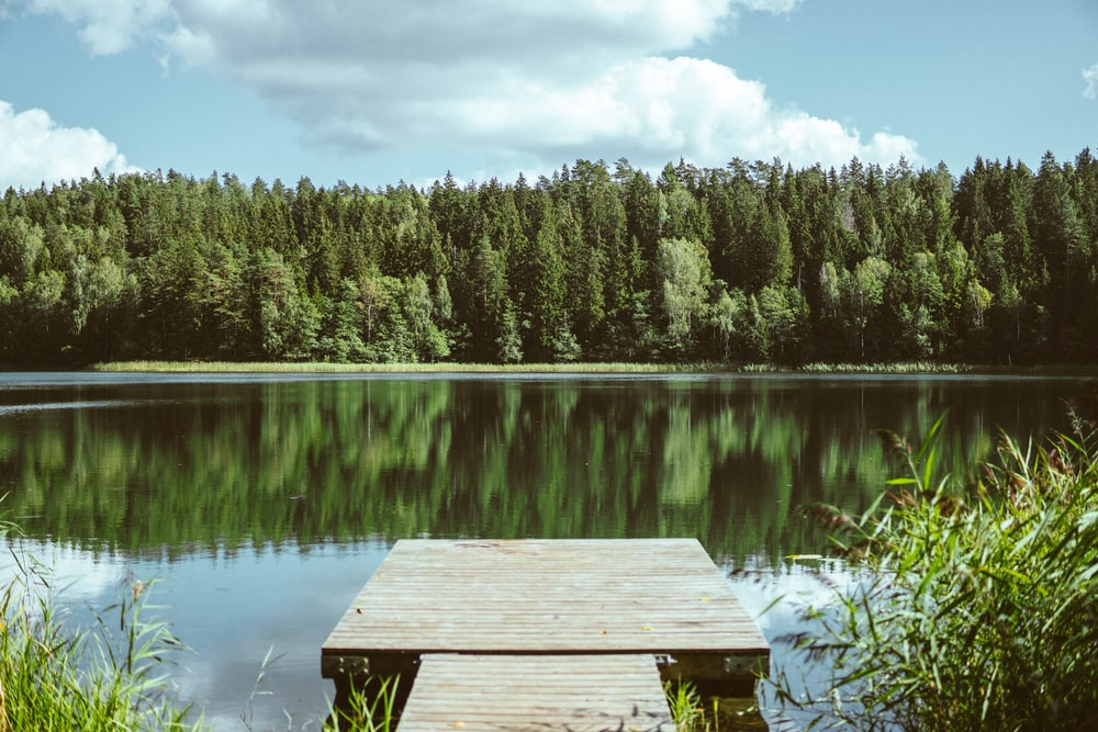 brown wooden dock in front of brown lake