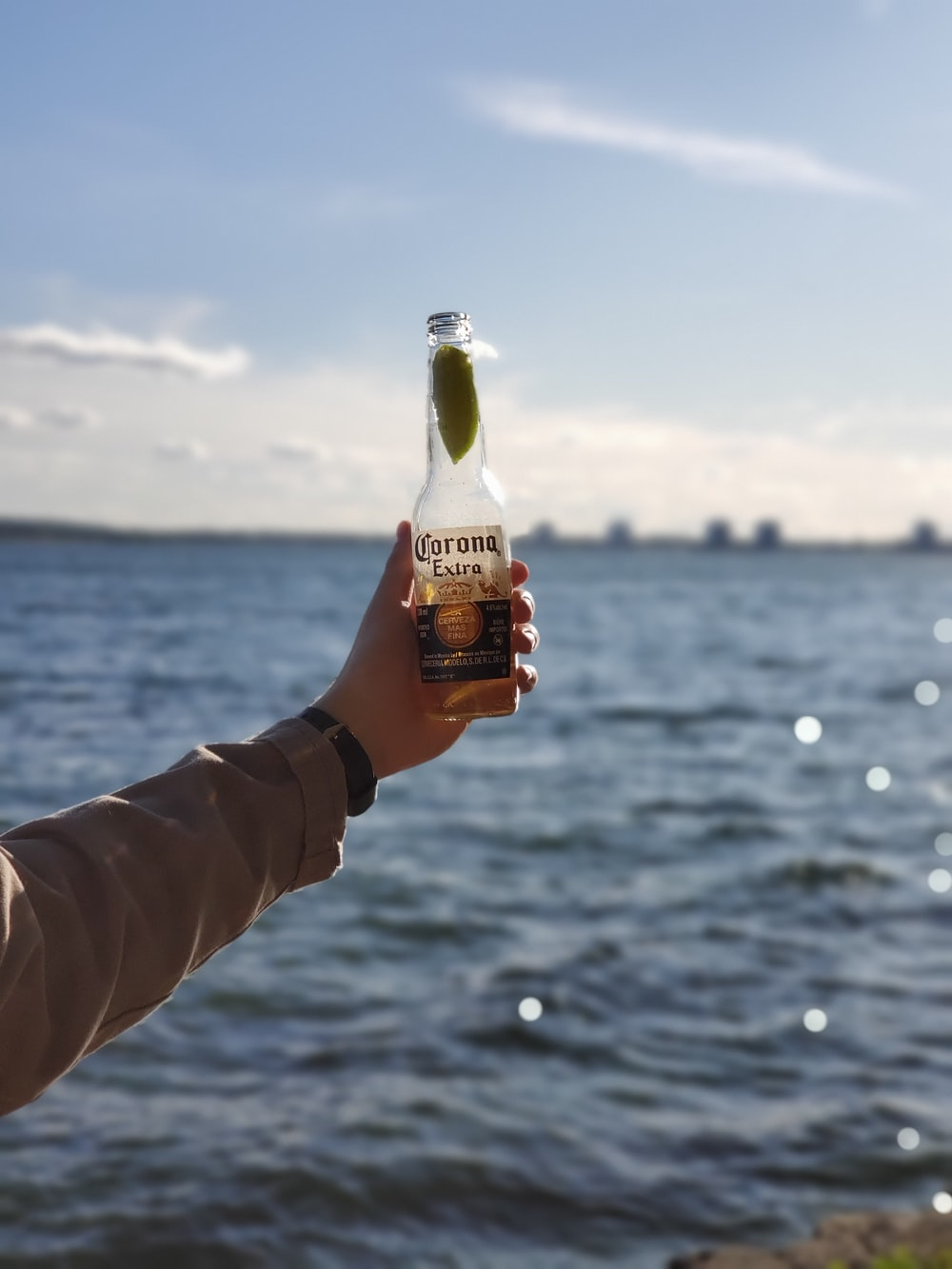 person holds Corona bottle