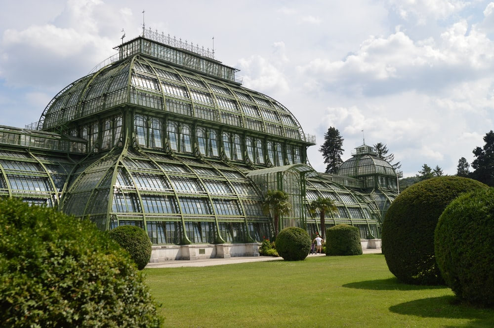 architectural photography of green house