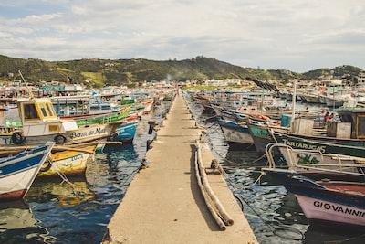Dock full of boats