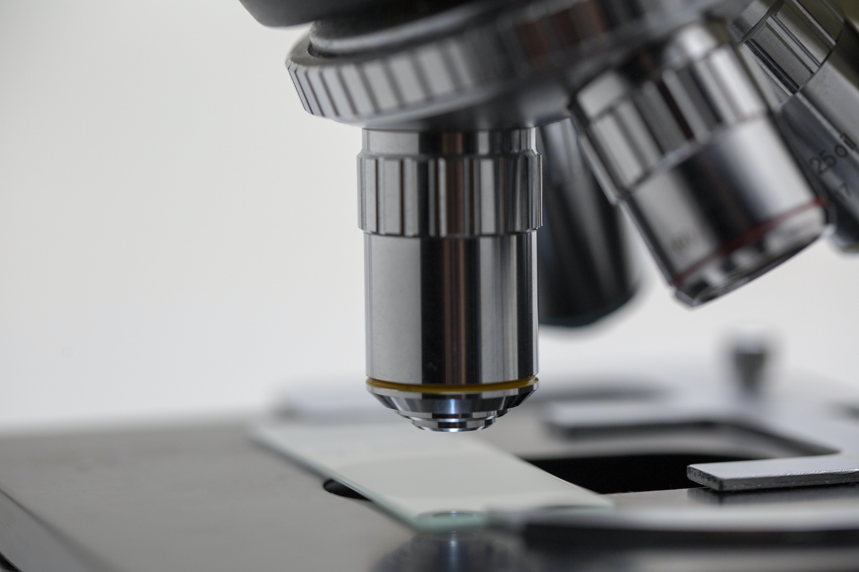 Научные стажировки в Европе