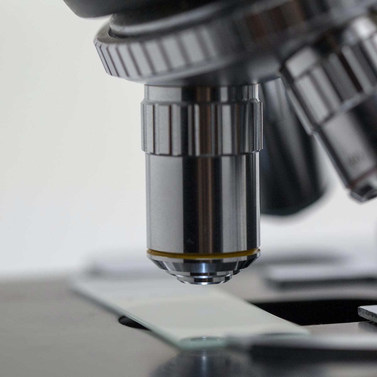 FECYT, silver microscope