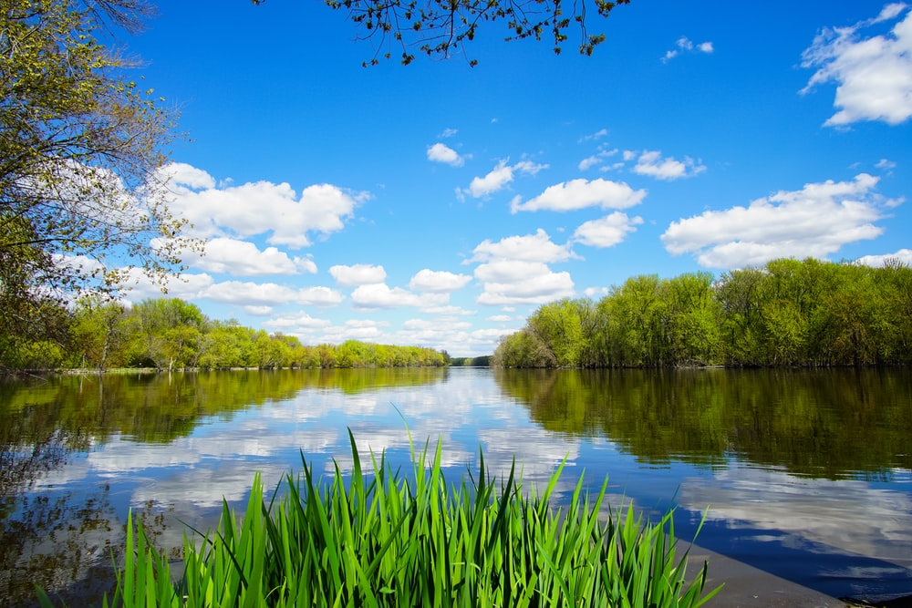 body of lake surrounded with green grass