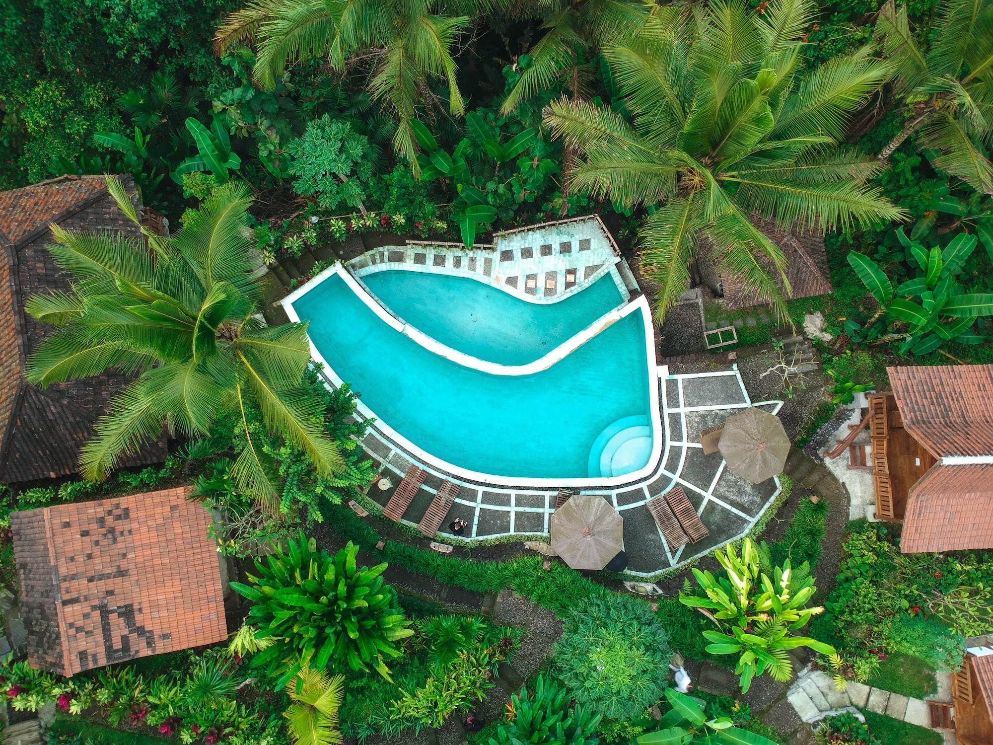 Jungle Pool Indonesia