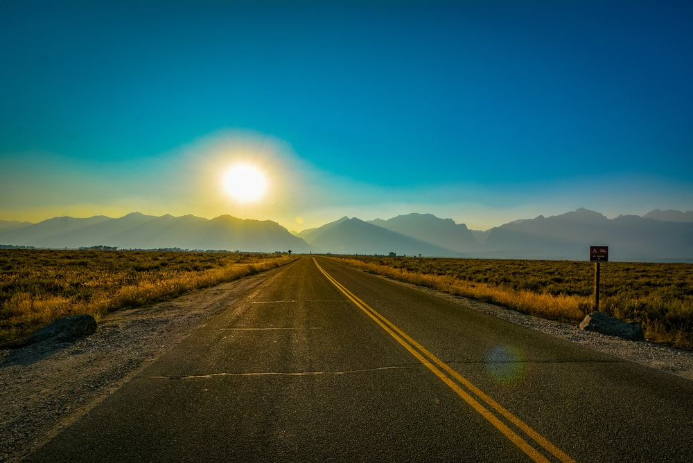 panoramic view of highway between bushes during sunrise