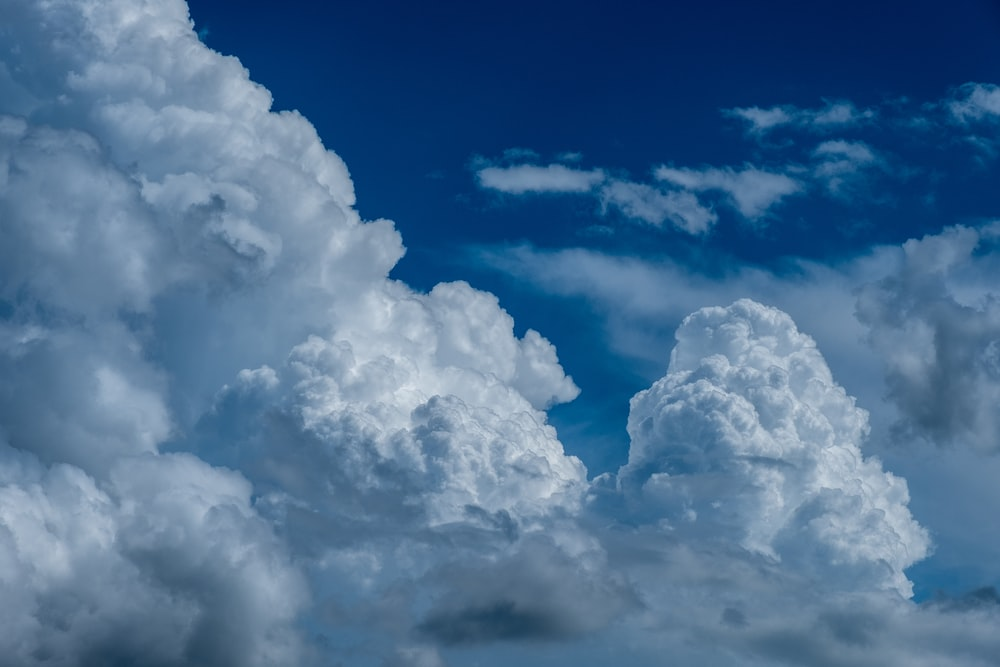 white and blue sky close-up photography