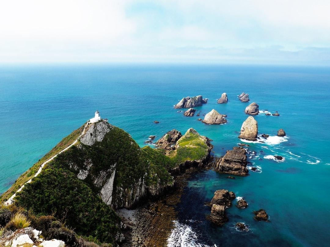 Beautiful World // New Zealand