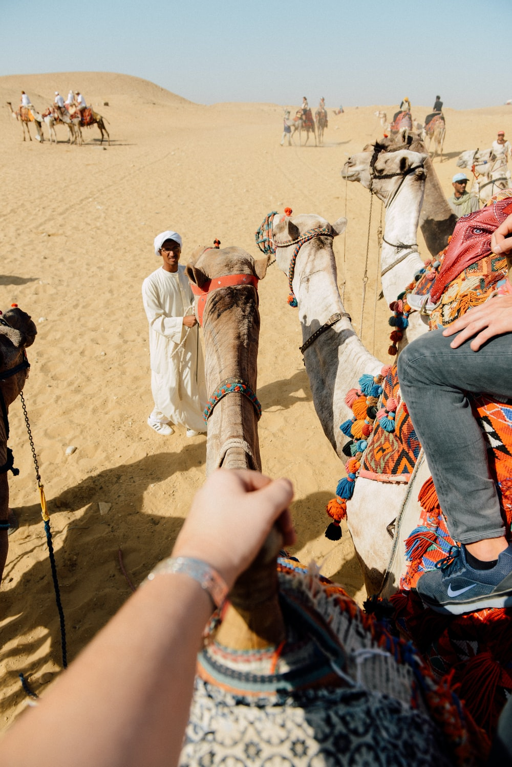 person on front of camel