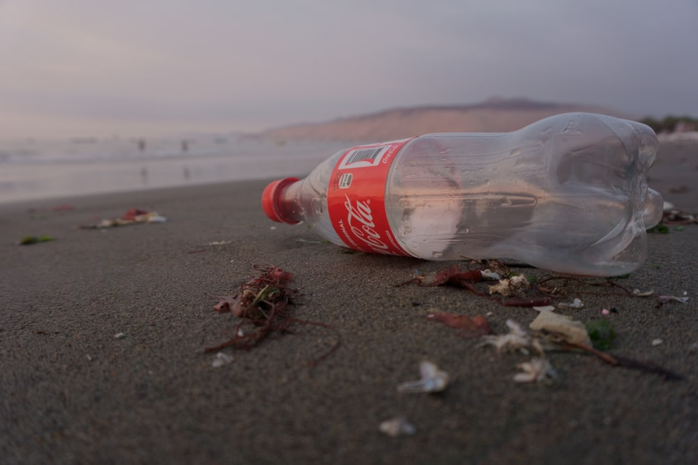 empty Coca-Cola bottle on shore