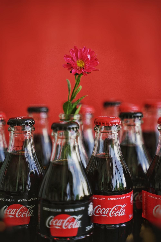 Coca-Cola bottle lot