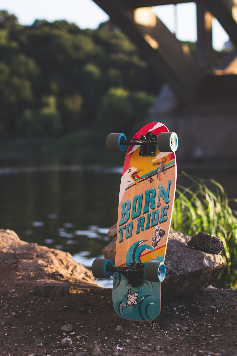 red and blue skateboard deck beside river