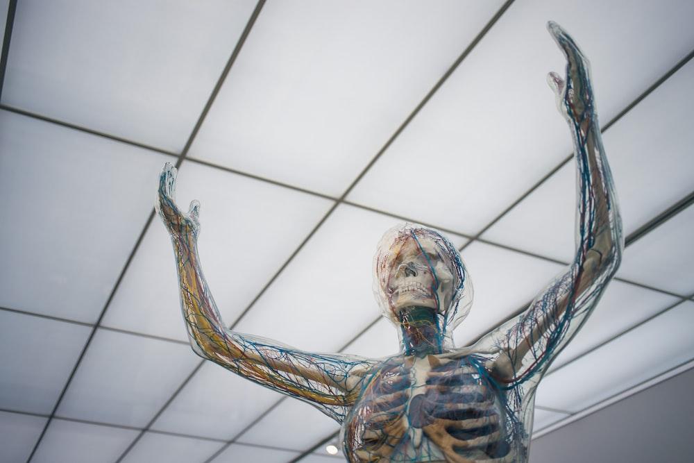 human body sculpture