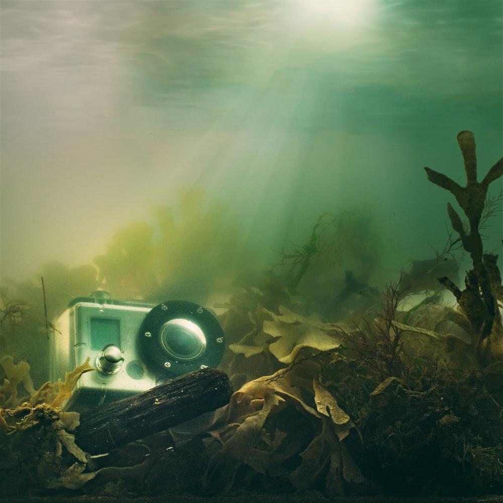 action camera in body of water digital wallpaper