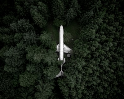 white airplane in the middle of the forest during day space shuttle teams background