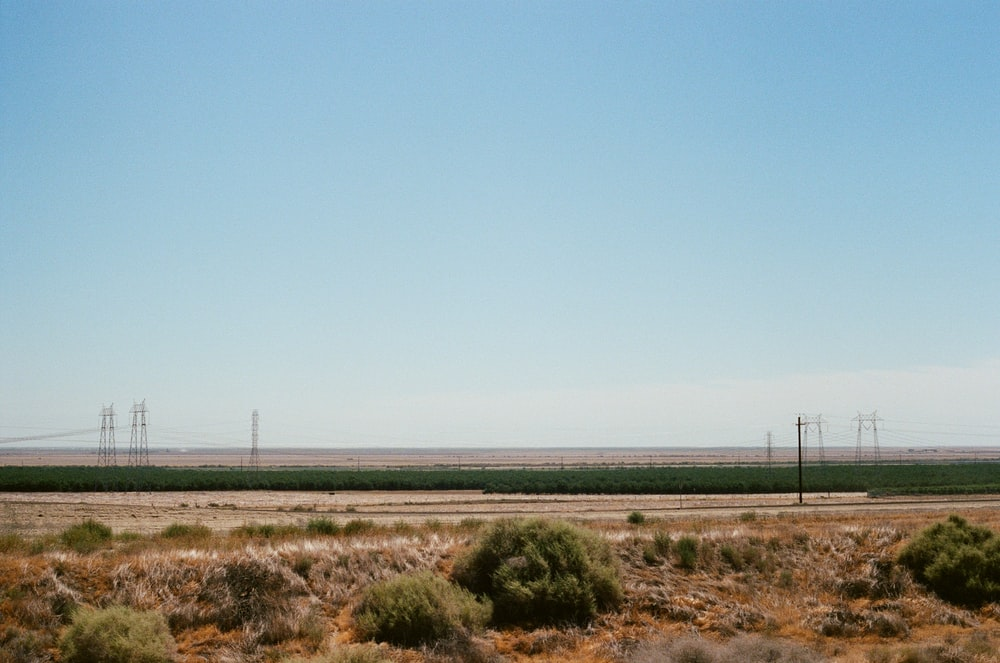 empty grass field