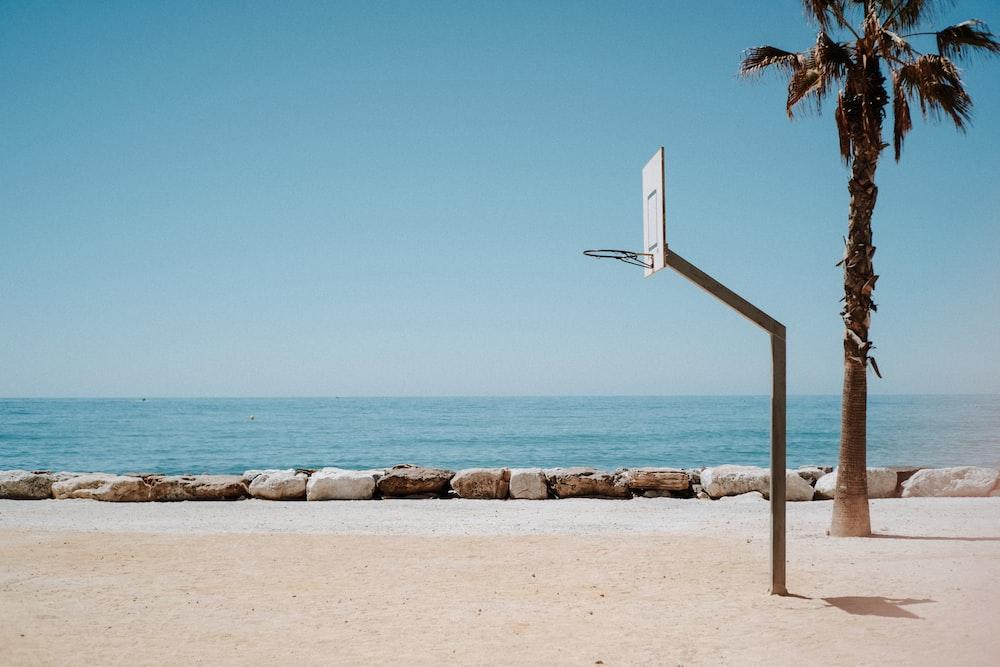 basketball hoop system near palm tree on shore